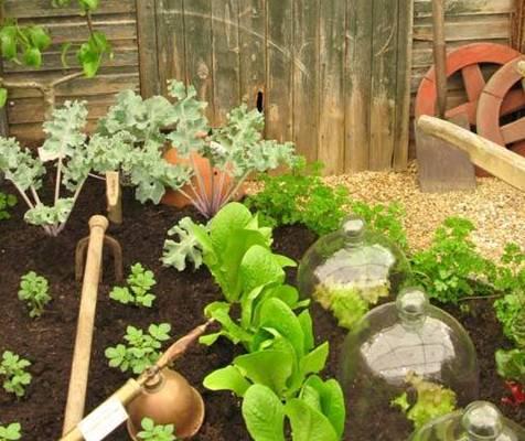 Сад и огород своими руками 955 0
